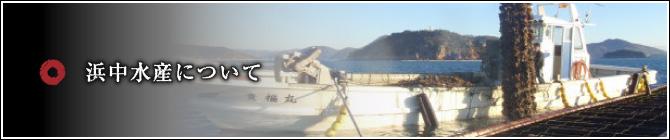 浜中水産について