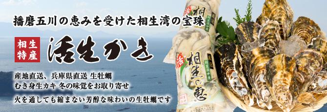 兵庫県相生産 食べ放題生牡蠣のセット直売所より産地直送 旬の味を生産者直売送料無料で即日発送
